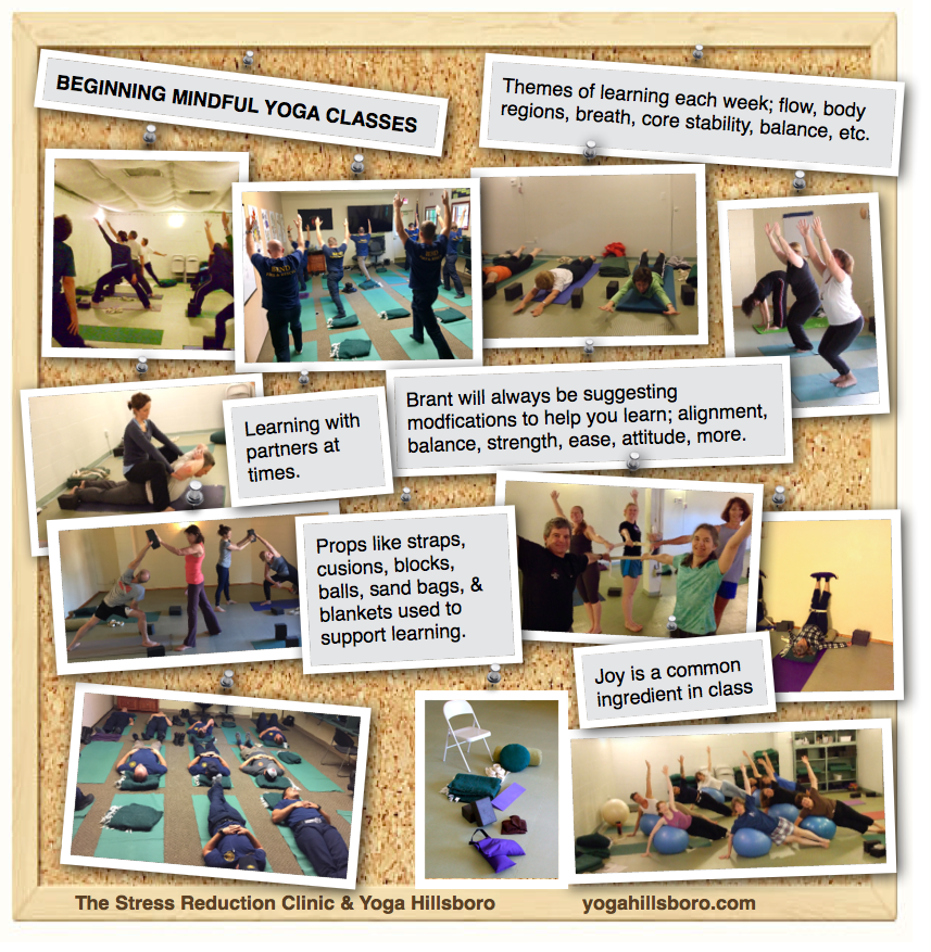 Yoga Classes Here All Welcome Mindful Toward Integration And Wellness Honoring Your Limitations Strengths Yoga Hillsboro The Stress Reduction Clinic